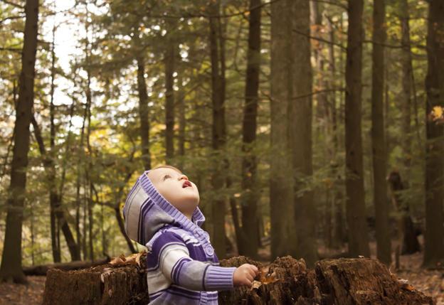 Us Trails In Early Childhood Education >> Toddler Programs   Seward Park Audubon Center